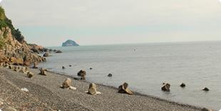 アラレ浜の写真