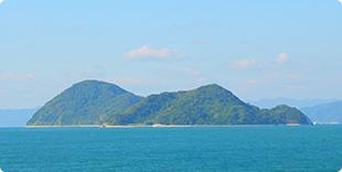 二神島全景の写真