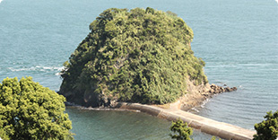 梅の子島(梅の子城跡)の写真