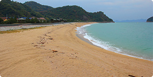 Photo of Himegahama Beach