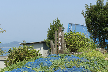 Recruiting planters and pickers (Gogoshima Island)