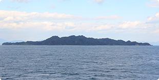 野忽那島全景の写真