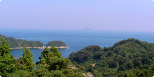 旗山頂上付近から眺める島の西側の写真
